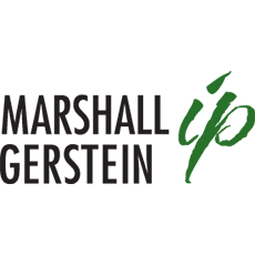 Marshall Gerstein and Borun